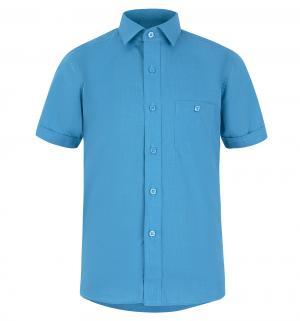 Рубашка , цвет: синий Tsarevich