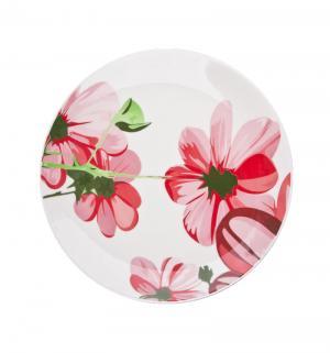 Тарелка обеденная  Биа, диаметр: 28 см Biona