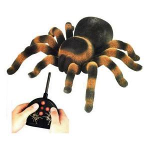 Радиоуправляемая игрушка Edu Toys