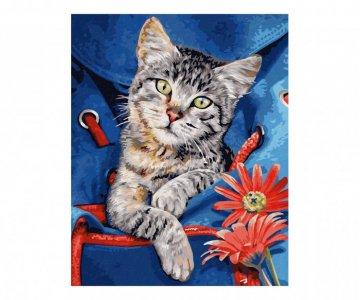 Картина по номерам Кот в сумке 30х24 см Schipper