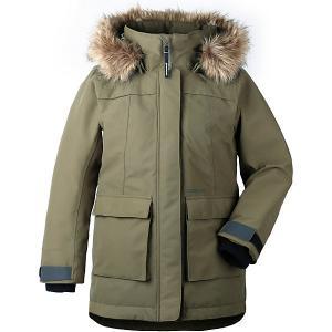 Утепленная куртка Didriksons Heijkenskjold DIDRIKSONS1913. Цвет: grün/grau
