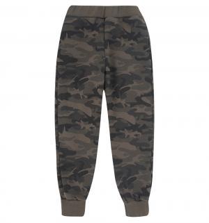 Спортивные брюки , цвет: зеленый GT