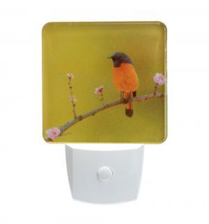 Светильник-ночник  NL 1LED Птица Старт