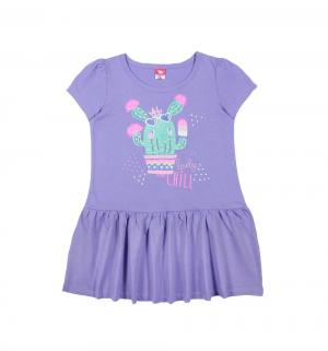 Платье , цвет: сиреневый Cherubino
