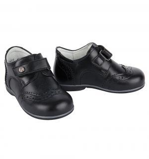 Ботинки , цвет: черный Elegami