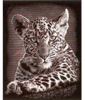Гравюра медная Детеныш леопарда Reeves