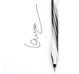 Ручка шариковая  COLOURPLAY Index