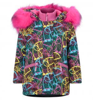 Куртка  Птицы, цвет: черный/фуксия Аврора