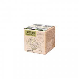 Набор для выращивания Гардения жасминовидная, Экокуб