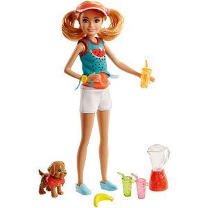 Игровой набор Barbie Сёстры и щенки Стейси, 23 см Mattel. Цвет: разноцветный