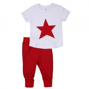 Комплект футболка/брюки Грачонок