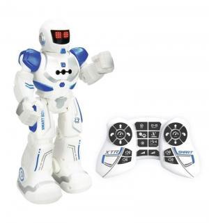 Робот на радиоуправлении  Xtrem Bots Агент 26 см Longshore Limited