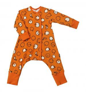 Комбинезон  Яблоки, цвет: оранжевый Bambinizon