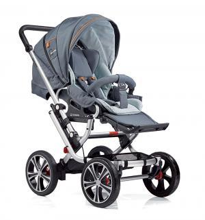 Прогулочная коляска  F10 Air+, цвет: серый Gesslein