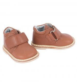Ботинки , цвет: коричневый Фома