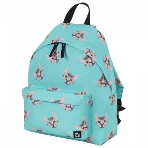 Рюкзак универсальный сити-формат Cats 41х32х14 см 229881 Brauberg