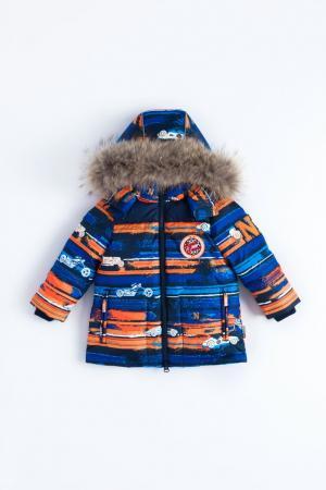 Куртка  Liro, цвет: синий/оранжевый Nels