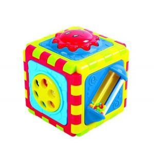 Развивающая игрушка  Куб 6 в 1 Playgo