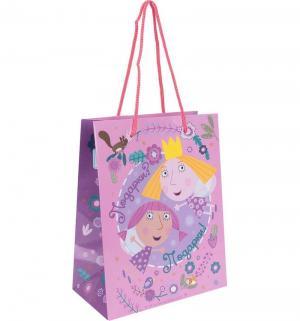 Подарочный пакет  Холли-фея, 23 x 18 10 см Olala