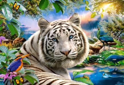 Пазлы Тигр (1500 деталей) Castorland