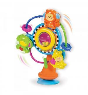 Развивающая игрушка  Колесо обозрения B kids