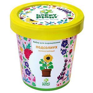 Набор для выращивания Подсолнух миниатюрный Happy Plant