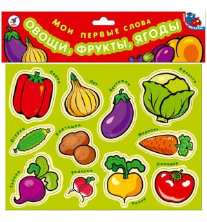 Азбука магнитная  Овощи фрукты ягоды. Мои первые слова Дрофа