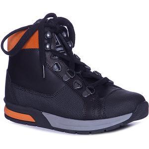 Ботинки Minimen. Цвет: черный