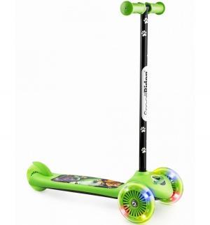 Самокат  Cosmic Zoo Scooter Flash, цвет: зеленый Small Rider