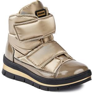 Утепленные ботинки Sector  Navigator Jog Dog. Цвет: золотой