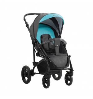 Прогулочная коляска  Picollo, цвет: графит/голубой Aroteam