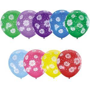 Воздушные шары  Ромашки 25 шт., пастель + декоратор Latex Occidental