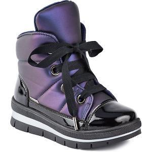 Утепленные Ботинки Sector Jog Dog. Цвет: лиловый