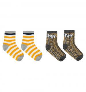 Комплект носки 2 пары  Большой Дэнди, цвет: синий/желтый Play Today