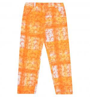 Брюки , цвет: оранжевый Милашка Сьюзи