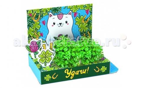 Живая открытка Удачи Happy Plant