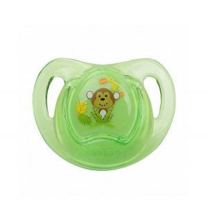 Соска-пустышка  Prizm Ортодонтическая силикон, с 6 мес, цвет: зеленый Nuby