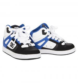 Кроссовки , цвет: черный/синий DC Shoes