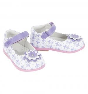 Туфли , цвет: фиолетовый Зебра