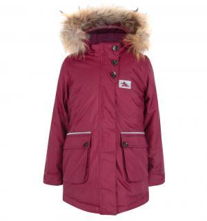 Куртка , цвет: бордовый Fobs