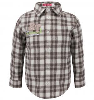 Рубашка  Победитель, цвет: серый Kiki Kids