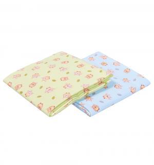 Комплект пеленка 2 шт  130 х 90 см, цвет: салатовый/голубой Sweet Baby