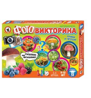 Настольная игра  Фотовикторина Грибы и ягоды Русский Стиль