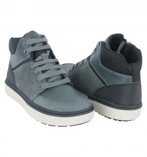 Ботинки  Mattias B boy, цвет: серый/черный Geox