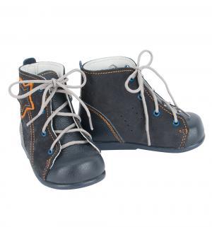 Ботинки , цвет: синий Скороход