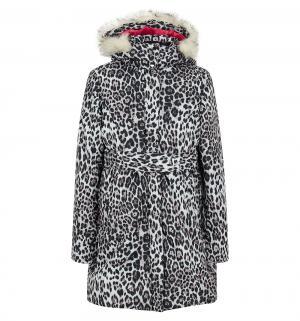 Куртка , цвет: белый/коричневый Baon