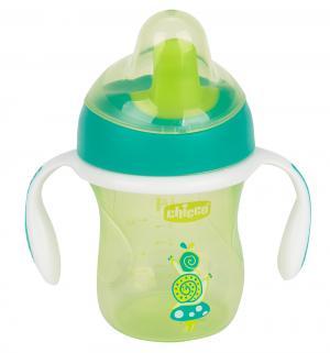 Чашка-поильник  Training cup с полужестким носиком, 6 месяцев, цвет: зеленый Chicco