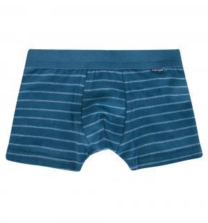 Трусы-шорты , цвет: синий Cornette