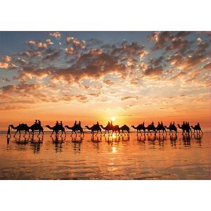 Пазл  Закат на пляже Кейбл Бич, 1000 элементов Educa