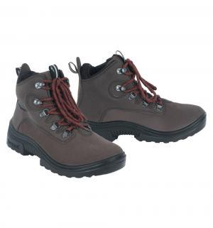 Ботинки  Patriot, цвет: коричневый Kuoma